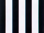 尼康体视显微镜SMZ1500