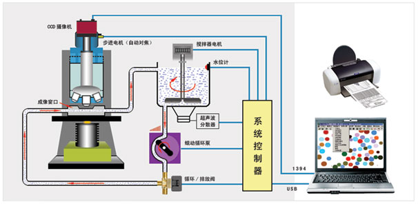 BT-1800 动态图像颗粒分析系统是一种内置循环分散系统和高速摄像机的图像粒度与形貌分析系统。它是显微成像技术、自动控制技术、图像处理技术结合高科技产品。只要把样品放入循环系统中后,系统将自动循环、分散、连续拍摄颗粒图像,并对颗粒图像进行处理与分析。