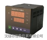 智能数显仪 WXJT-1