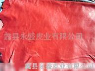 皮革、服装革印花035