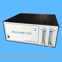 计算机智能多组份动态配氣系統 GDS-D2