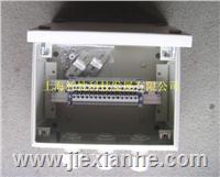 碳钢接线端子箱 F203012