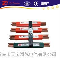 进口型欧标250A铜滑触线  TBWT