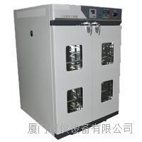 電熱恒溫鼓風干燥箱
