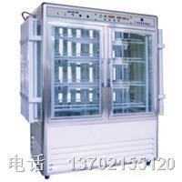 LRH-800-G光照人工气候培养箱 LRH-800-G光照培养箱