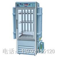 LRH-250-GSbI人工气候箱 LRH-250-GSbI
