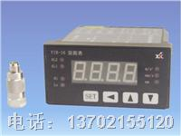 VIB-16振动监测系统 VIB-16