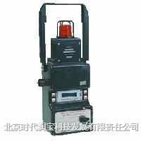 移动式复合气体检测仪 BM22型