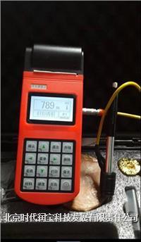 TH110里氏硬度计 TH110