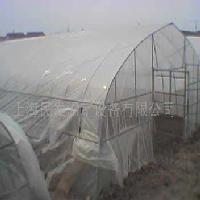 上海各种不同型号农用钢管大棚