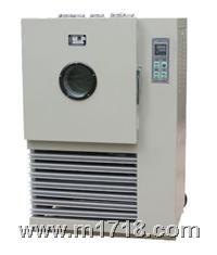 热老化试验箱  401B