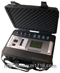 便携红外多组分烟气分析仪 产品型号:Gasboard-3000P Gasboard-3000P