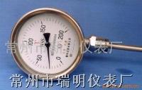 WSS双金属温度计 WSS—411