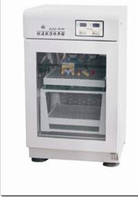 恒温双层振荡培养箱 HZQ-X100