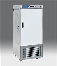 人工氣候箱 RGX-300E
