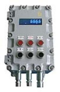 防爆称重显示仪表 ST300