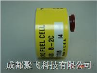 氧气传感器C06689-B2C Class  B-2C