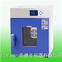 电热鼓风干燥箱 DHG
