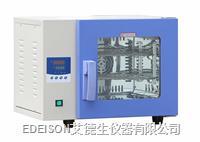 电热恒温鼓风干燥箱 DHG-9013AS