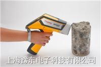 NITON XL2手持式矿石分析仪 XL2