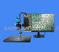 电视/视频显微镜