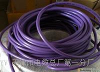 2芯数6XV1830-OEH10电缆 2芯数6XV1830-OEH10电缆