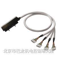 罗克韦尔 CONTROL LOGIX   PAC-CTLX-2X10-V0-2M5  1511970025 罗克韦尔 CONTROL LOGIX   PAC-CTLX-2X10-V0-2M5  1511970