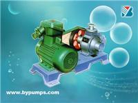 液化气泵 YQB