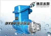 校内网磁力泵/021-63540895 磁力泵