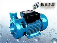 DK清水泵 DK