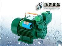 清水自吸泵 DBZ