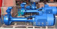 NL型液下式排泥泵,单级单吸液下式排泥泵,单吸泥浆泵 NL型