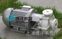 FPZ型自吸塑料泵 FPZ