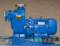 CYZ-A型自吸式油泵 CYZ-A型