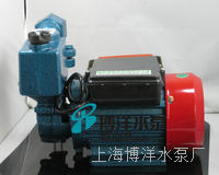 DBZ清水自吸泵 ,清水自吸泵
