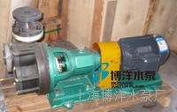 FPZ型自吸塑料泵,FPZ型工程塑料自吸泵,耐腐蚀塑料自吸泵