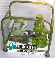 西藏拉萨电动计量加油泵   铸铁手动,电动计量加油泵 BYJB-70型