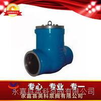 BIP6BW水壓試驗閥 BIP6BW