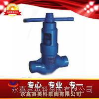 J66Y焊接油田截止閥 J66Y-16254064