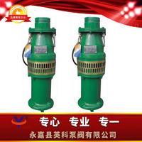 油浸式潛水泵 QY型
