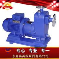 自吸式磁力泵 ZCQ型