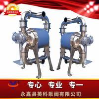 衛生級電動隔膜泵 YKDW