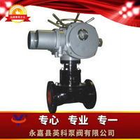 電動隔膜閥 G941J