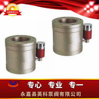 低真空電磁壓差閥 DYC-Q16型