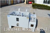 上海盐雾试验箱