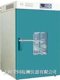 热老化试验箱 RK-9100
