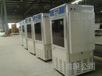 连云港微电脑全自动控制智能光照培养箱-GZH-160A 160L 0~50℃ GZH-160A