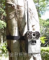**彩信数据传输红外监控摄像机AM-999/高清拍照可以选配太阳能电池供电 AM-999 AM999