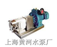 LQ系列柴油机转子泵(B型) 三角洲牌LQ型