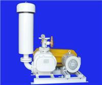 伊旋罗茨真空泵 RSV-125